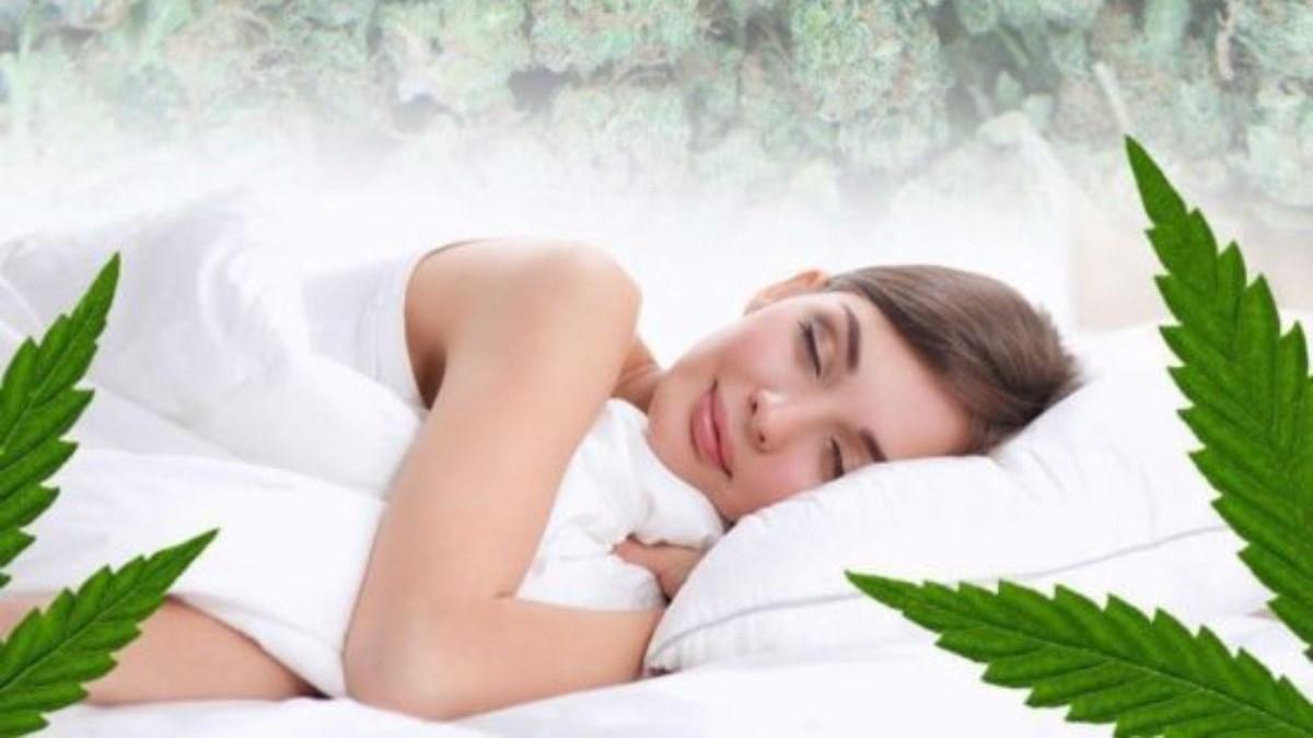 https://myswisscbd.com/wp-content/uploads/2020/08/mi.cannabis-mag.jpg