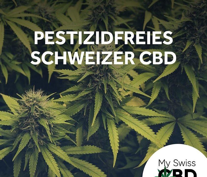 https://myswisscbd.com/wp-content/uploads/2021/08/Pestizidfreies-Schweizer-CBD-843x720.jpg